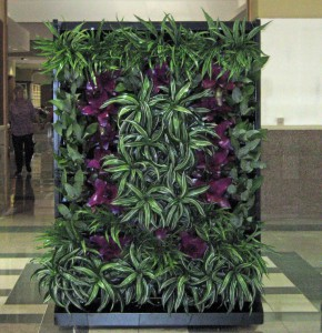 Custom Designed Green Walls for Offices