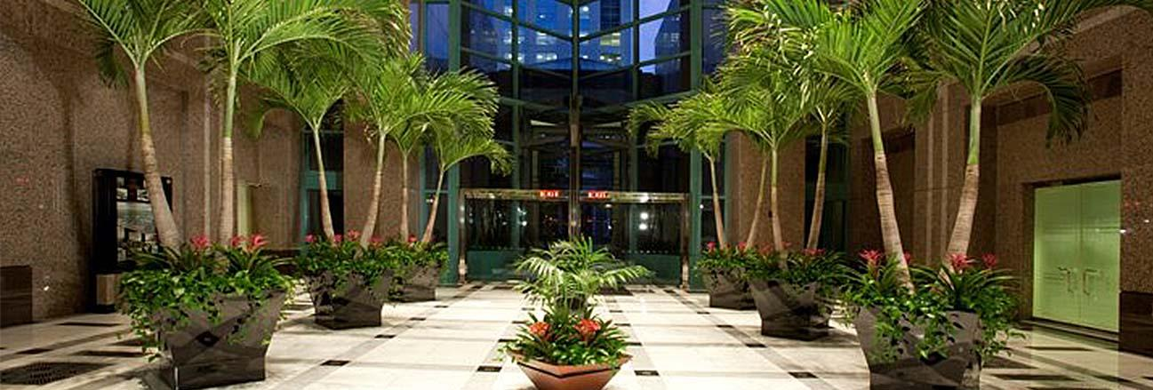 tropical plants in commercial building