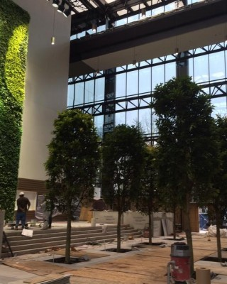 Atlanta ga foliage design systems corporate - Registered interior designer georgia ...