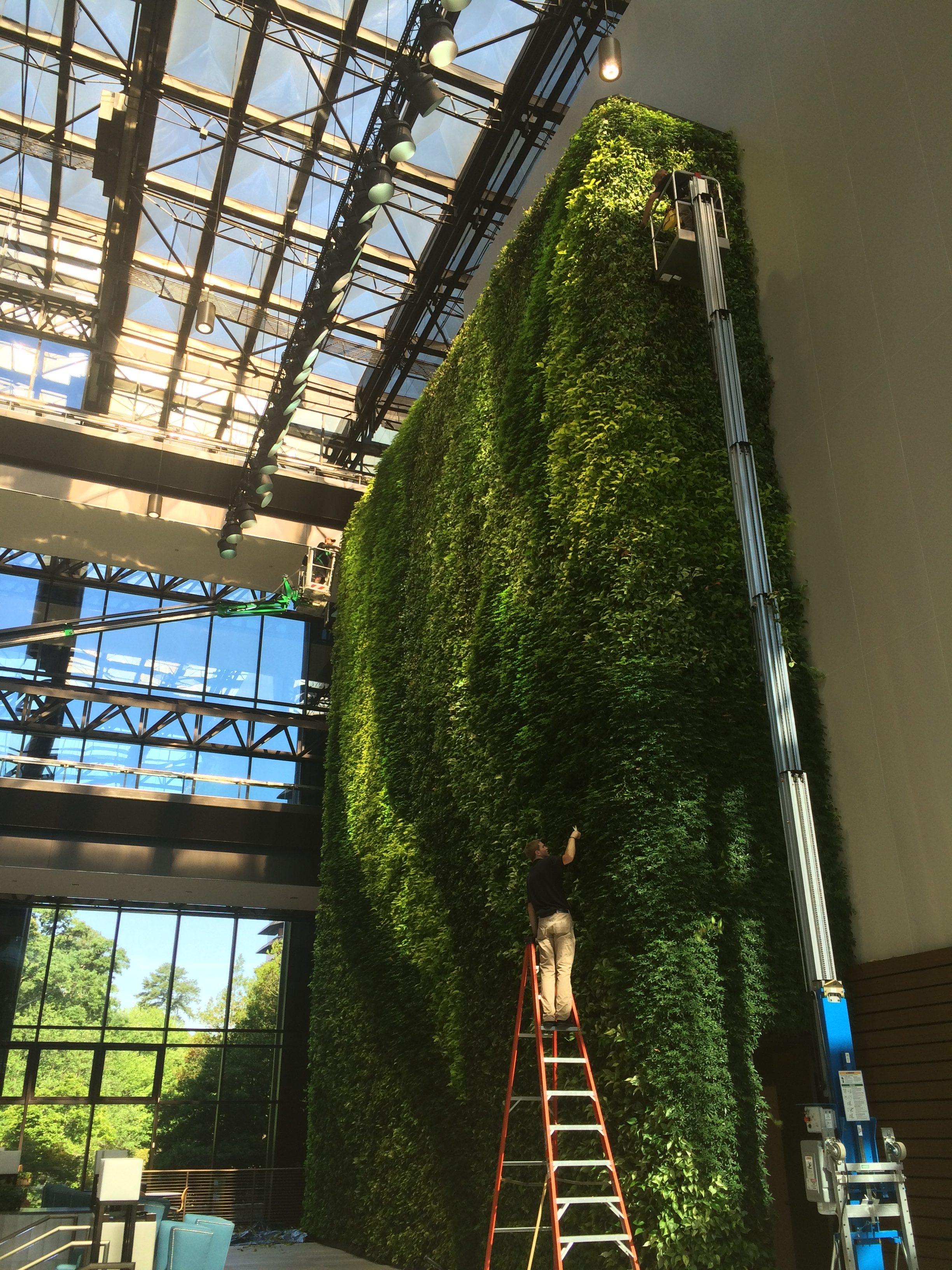 Three Ravinia Green Wall Living Plant Wall Foliage