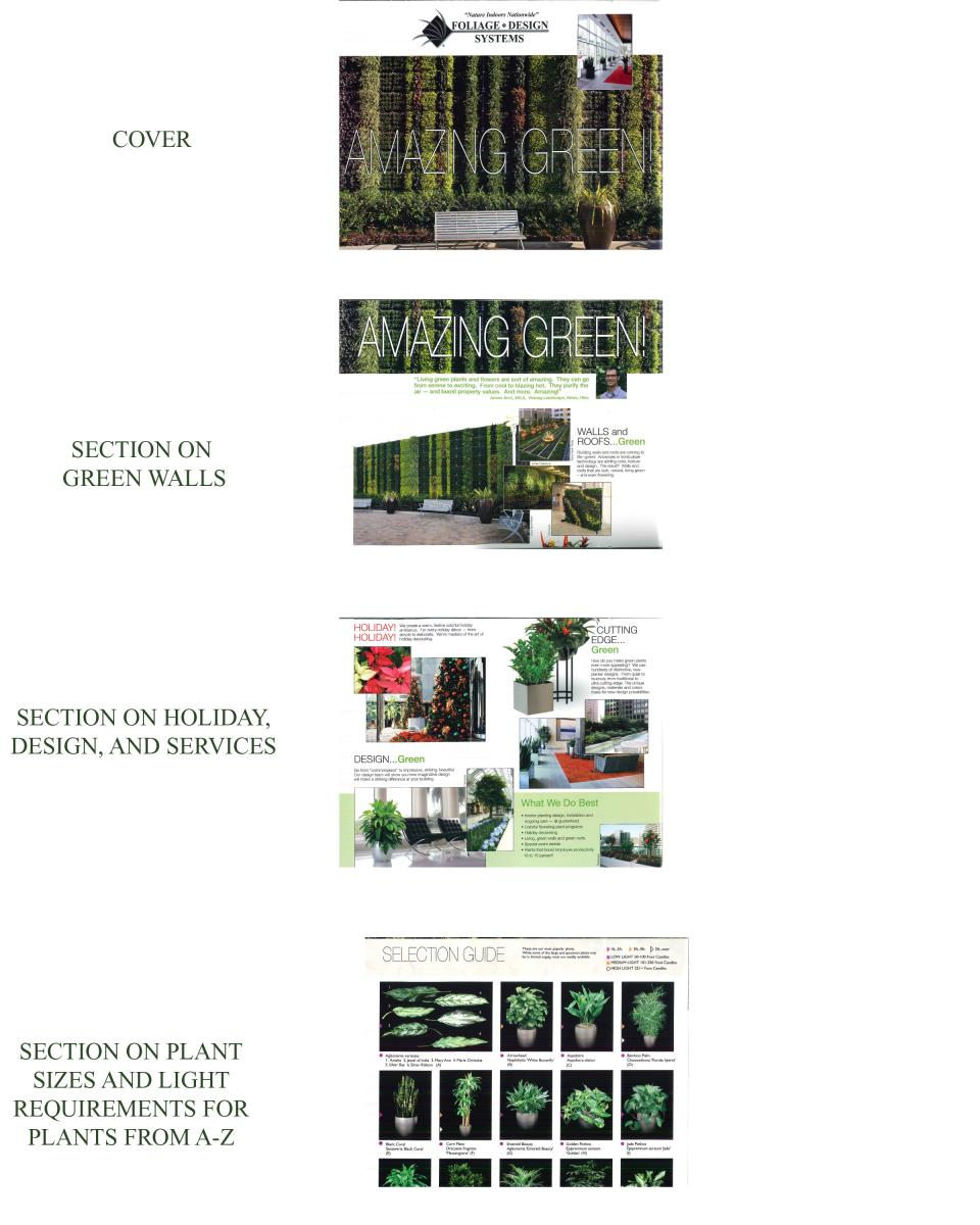Amazing Green Brochure