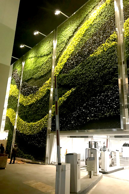 Indoor Green Walls Interior Floral Design Franchise At