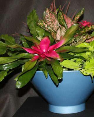 blue tabletop flower bowl